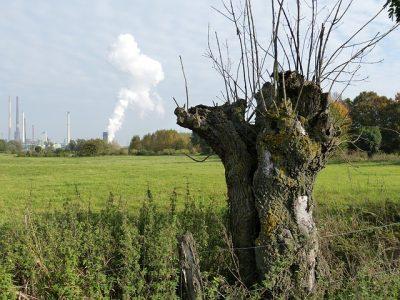 Foto: Kraftwerk am Niederrhein von falco, pixabay