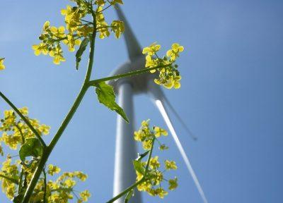 Windenergie 330064 HardyS pixabay